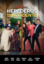 Herederos por accidente (Serie de TV)