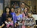 Hi Honey, I'm Home (TV Series)