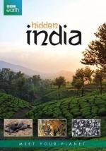 India oculta (Miniserie de TV)
