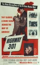Carretera 301