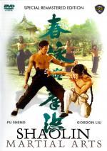 Hong quan yu yong chun (Shaolin Martial Arts)