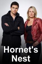Hornet's Nest (TV)