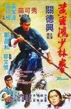 Huang Fei Hong xiao lin quan