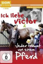 Ich liebe Victor (TV)