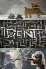 Ident (C)