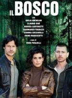 Il Bosco (TV)