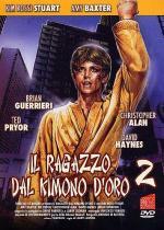 Il ragazzo dal kimono d'oro 2 (Karate Warrior 2)