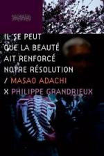 Il se peut que la beauté ait renforcé notre résolution - Masao Adachi