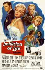 Imitación a la vida