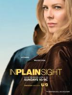 In Plain Sight (TV Series)