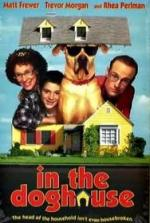 In the Doghouse (TV)