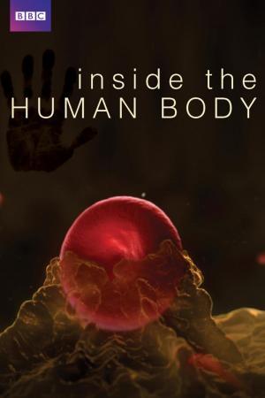 En el interior del cuerpo humano (Serie de TV)