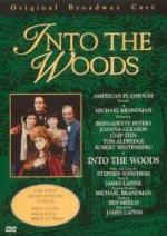 Into the Woods (TV)