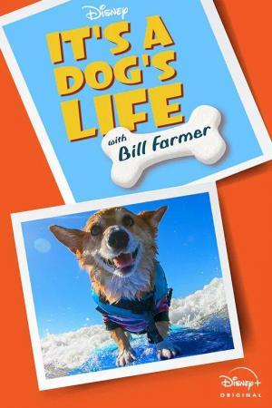 Una vida de perros con Bill Farmer (Serie de TV)