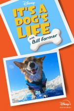 It's A Dog's Life with Bill Farmer (TV Series)
