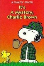 Es un misterio, Charlie Brown (TV)