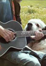 Jarabe de Palo: Misteriosamente hoy (Music Video)