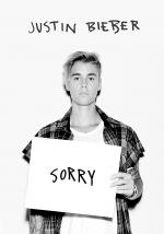 Justin Bieber: Sorry (Purpose: The Movement) (Vídeo musical)