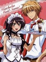 Maid Sama! (TV Series)