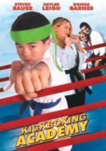 Academia de Kickboxing