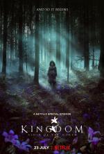 Kingdom: Ashin of the North (TV)