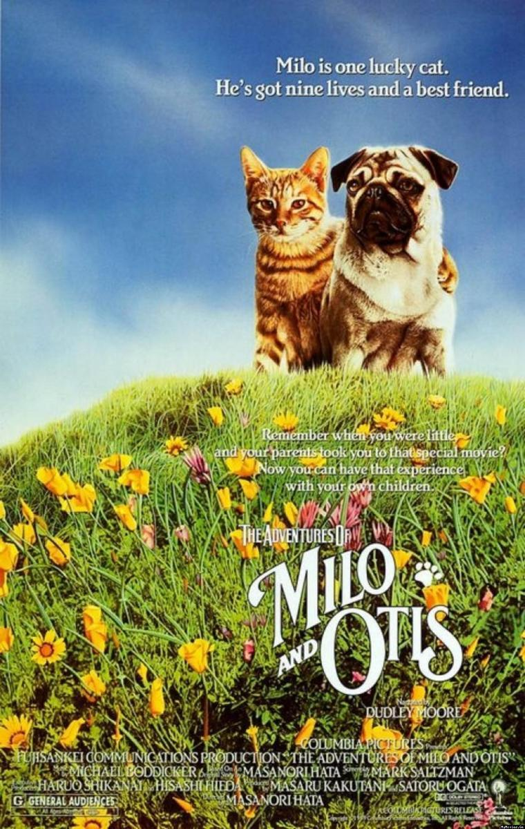 The Dog And The Cat Hbo