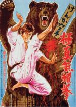 Karate Bear Fighter
