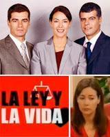 La ley y la vida (Serie de TV)