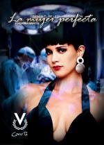 La mujer perfecta (Serie de TV)