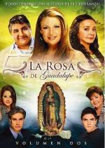 La Rosa de Guadalupe (TV Series)