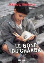 El chico de Chaaba