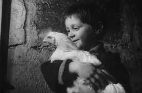 The Chicken (C)