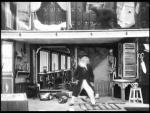 Le savant et le chimpanze (C)
