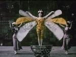 El escarabajo de oro (C)