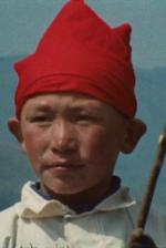 Les Kazaks