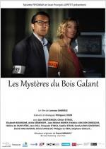 Les mystères du bois galant (TV)