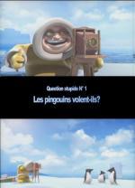 Do Penguins Fly? (C)