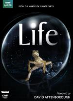 Life (TV Miniseries)