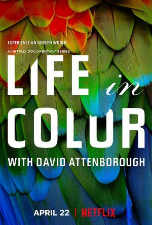La vida a todo color, con David Attenborough (Serie de TV)