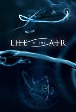 Life in the Air (Miniserie de TV)