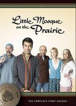 Little Mosque on the Prairie (TV Series)