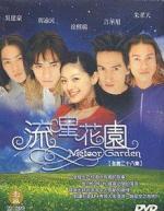 Meteor Garden (Serie de TV)