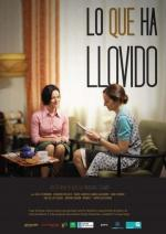 Lo que ha llovido (TV)