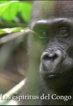 Los espíritus del Congo