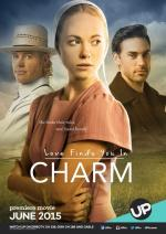 Love Finds You in Charm (TV)