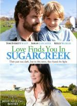 Love Finds You in Sugarcreek, Ohio (TV)