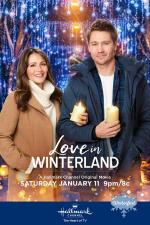 Love in Winterland (TV)