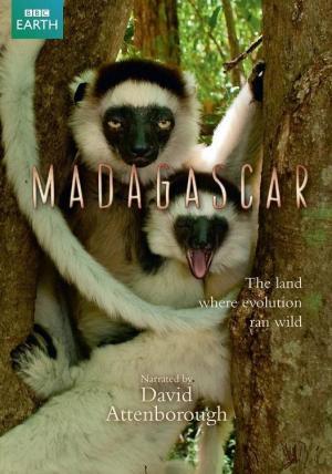 Madagascar (Miniserie de TV)