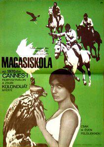 Magasiskola (The Falcons)
