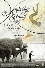 Muybridge's Strings (S)